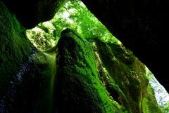 洞窟に現れるような