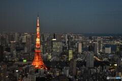 東京タワーの夕景
