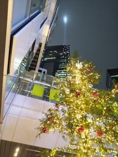 クリスマスツリーと渋谷スクランブルスクエア