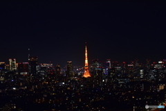目立つ東京タワー