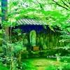 京都蓮華寺にて(2)