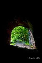 トンネルの向こうの新緑