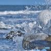 凍てつく日本海(北海道)の波しぶき
