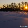 雪原に日の出とシルエット
