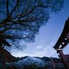 600年の夜空