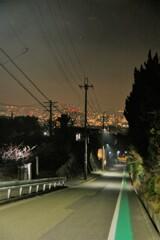 聖地「ハルヒ坂」夜景版