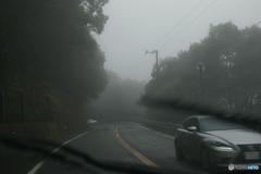雨ドラ① 霧