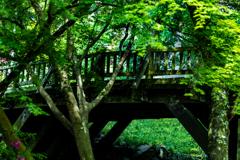 緑に架る橋