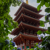 高幡不動尊金剛寺の五重塔