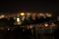 向こうにはキレイな夜景