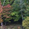 志賀高原の紅葉2