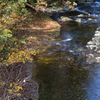 紅葉に染まる渓流