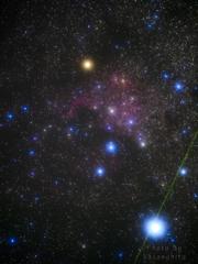 北アメリカ星雲 -Ⅰ-