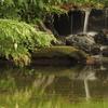 デカボックリと滝