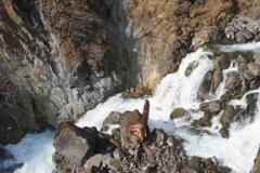 滝の向かう先