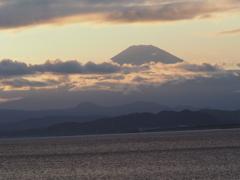 今シーズン初富士山 江ノ島より