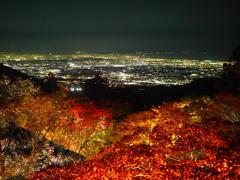 ライトアップ大山阿夫利神社からみた湘南夜景