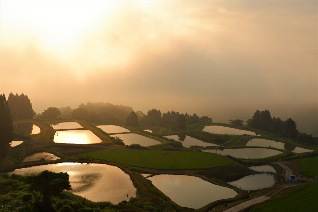 朝靄の棚池