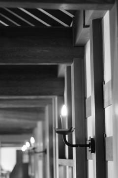灯り 広島城二ノ丸
