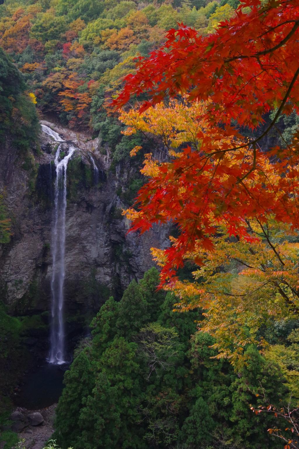 福喜野の滝 その2