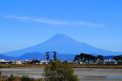 今日の富士山(安倍川河口にて)