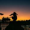 夕凪Sunset ~Seahorse~