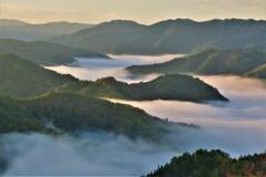 小入谷峠の朝景雲海 7