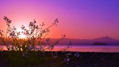 琵琶湖朝景色 3