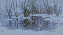 小さな森の水辺の冬物語 7
