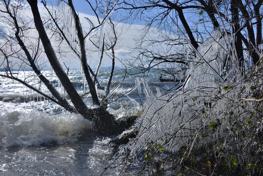 淡海しぶき氷 4