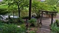 根道神社の名もなき池