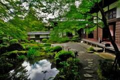 新緑の湖東三山金剛輪寺 6