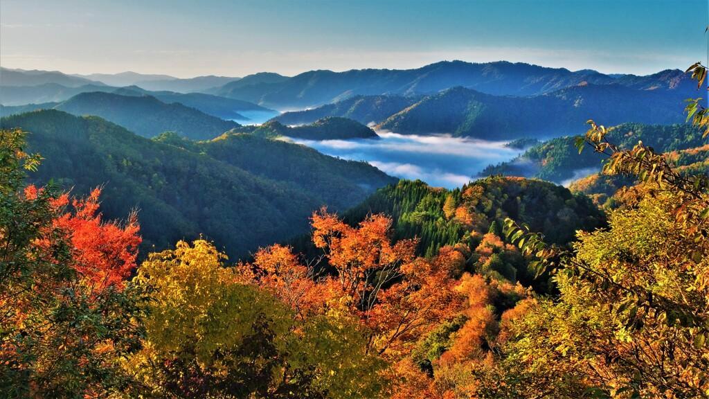 晩秋の小入峠雲海