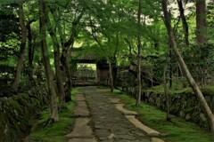 新緑の湖東三山金剛輪寺 3