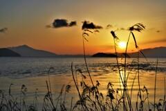 琵琶湖湖西マキノの朝日