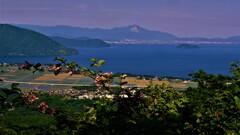夏めく奥琵琶湖