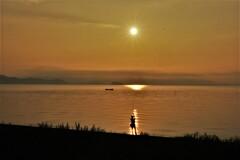 湖辺の朝釣り 5