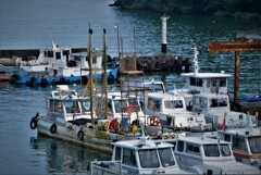 琵琶湖堀切漁港