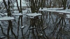 小さな森の水辺の冬物語 6