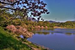 日野川ダム親水公園 5