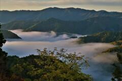 小入谷峠の朝景雲海 6