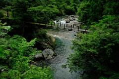 渓流神崎川