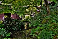 新緑の湖東三山金剛輪寺 5