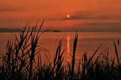 湖西の朝景 Ⅱ