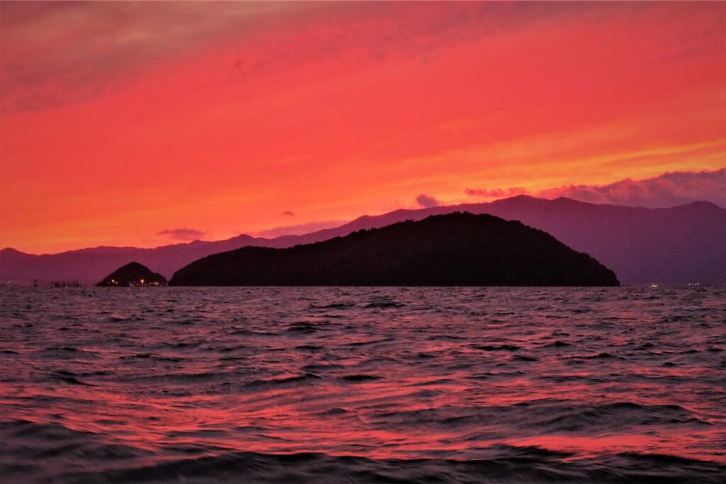 淡海夕暮れ猫島
