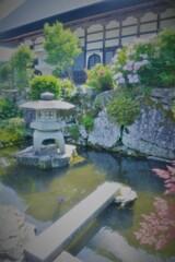 余呉全長寺前庭池