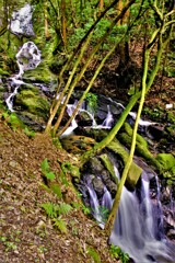 九品の滝 4-4