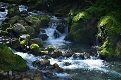 渓流の水音