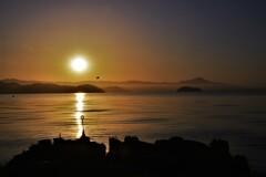 琵琶湖朝景色 5