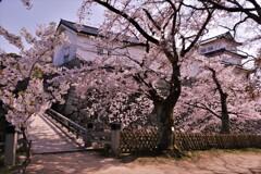 彦根城春散歩 西の丸三重櫓 10